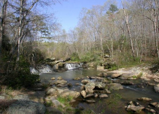 Riverfront homes for sale in Gainesville GA, Estate home sales, Realtor specializing in Estate homes in GA,